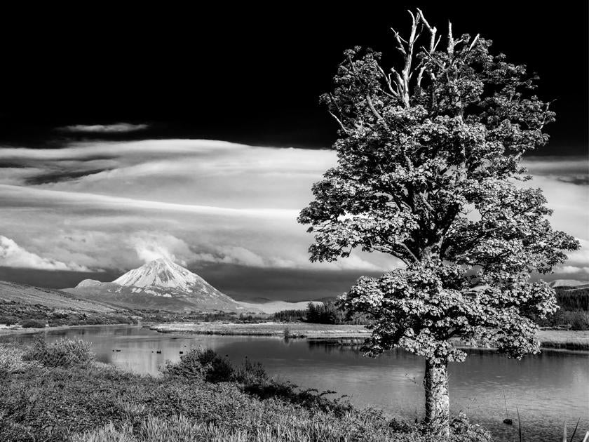 Black & White Landscape