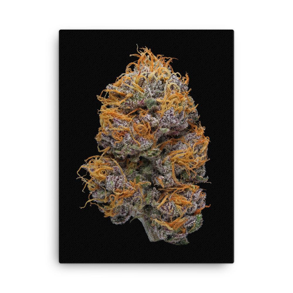 Granddaddy Purple (GDP) - Art Print