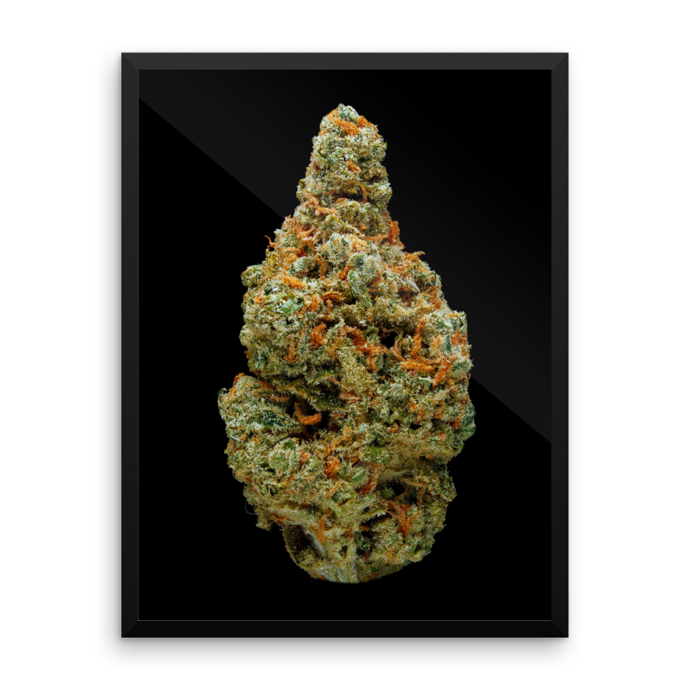 Green Crack - Art Print