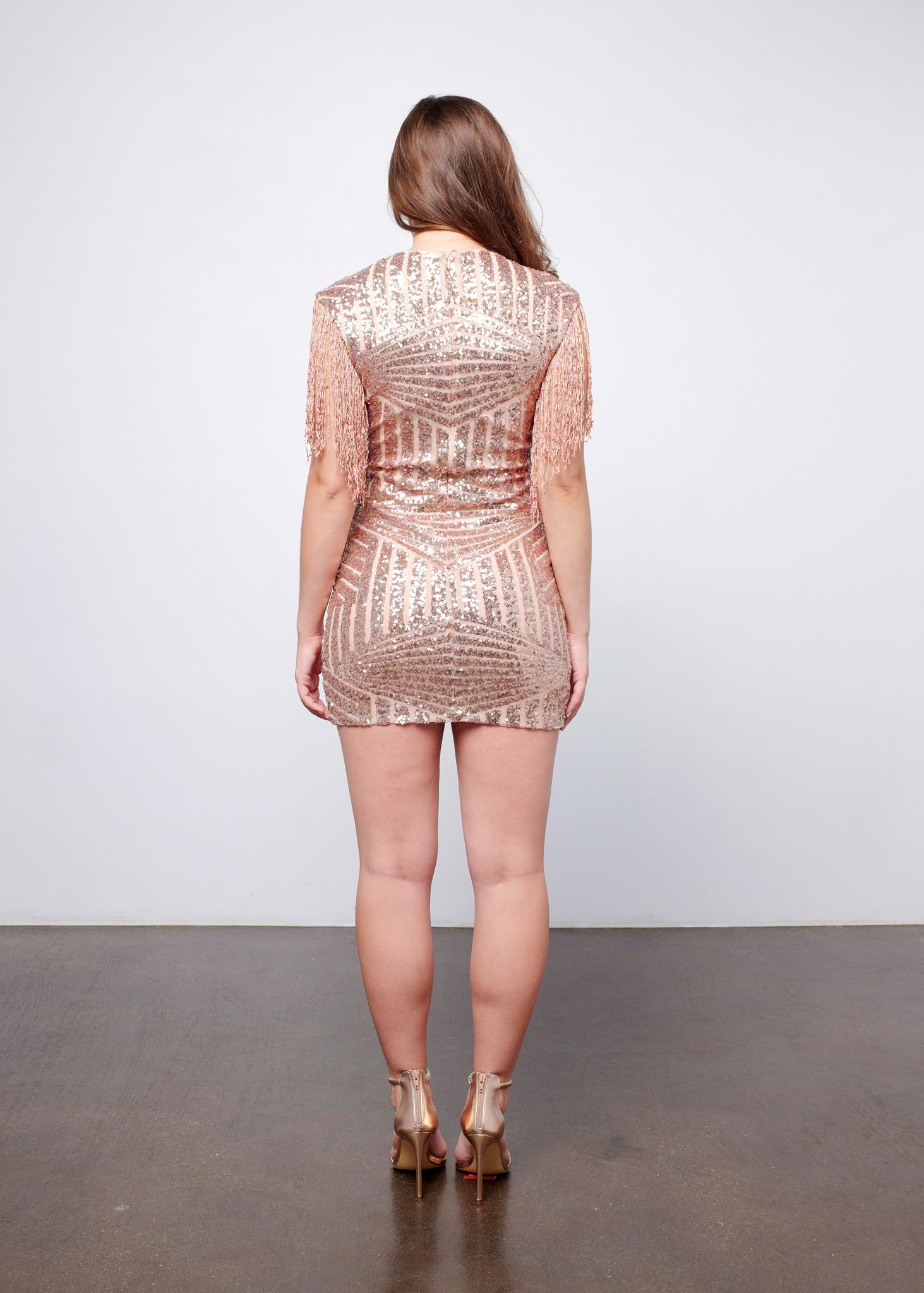 Sequin Fringe Birthday Dress 3