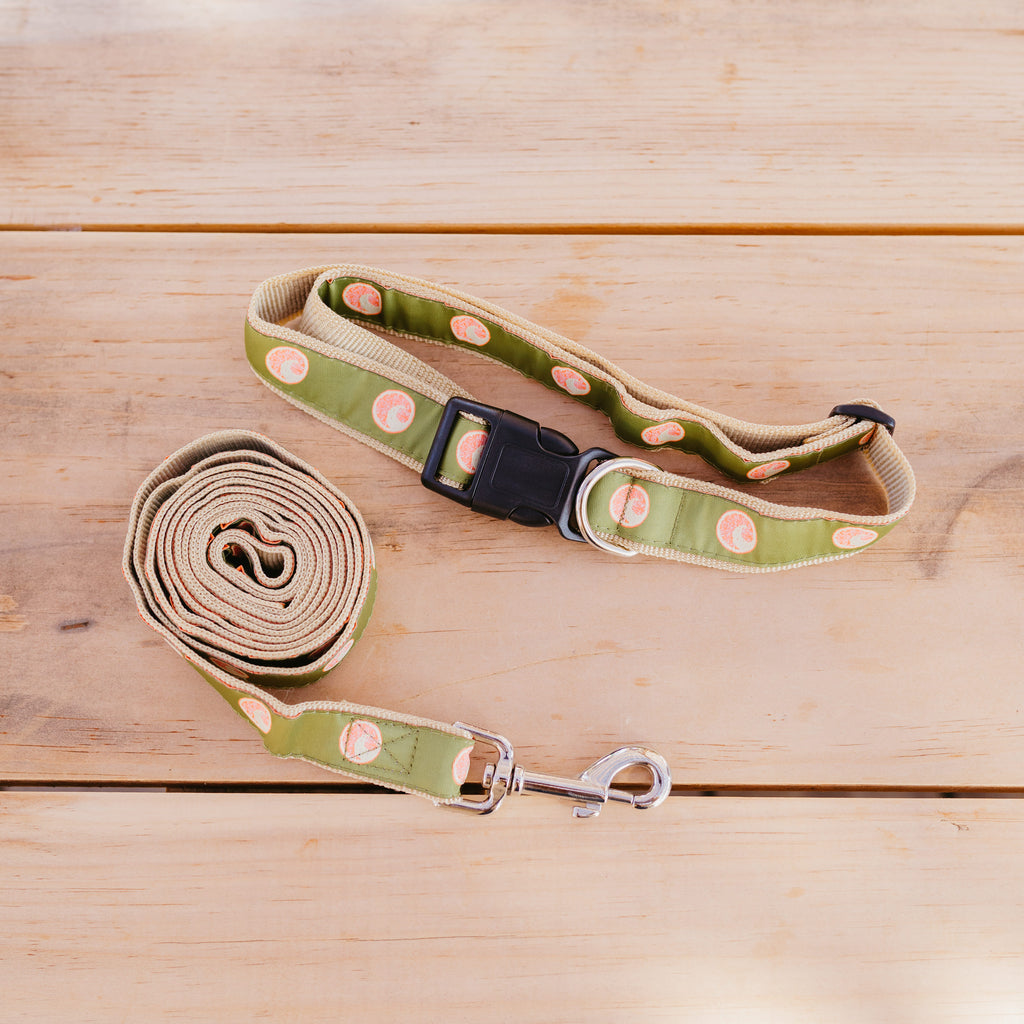 GRIPAH IPA  DOG LEASH