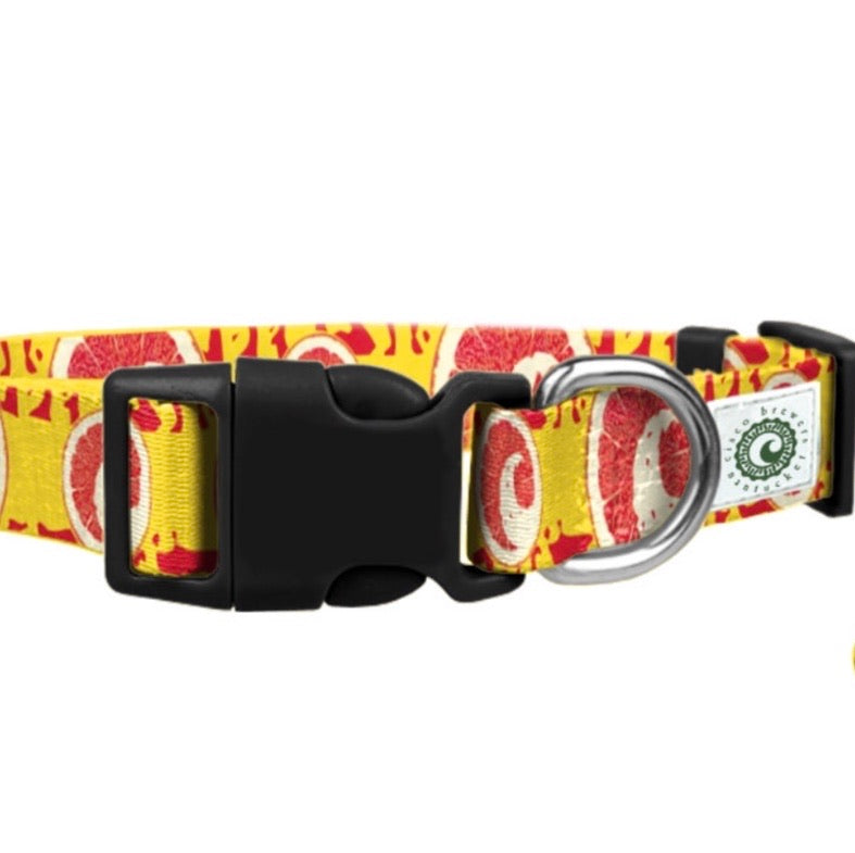 CISCO BREWERS GRIPAH DOG COLLAR