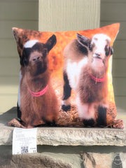 Harmony Lane Goat Pillow