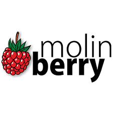 MB - MOLINBERRY