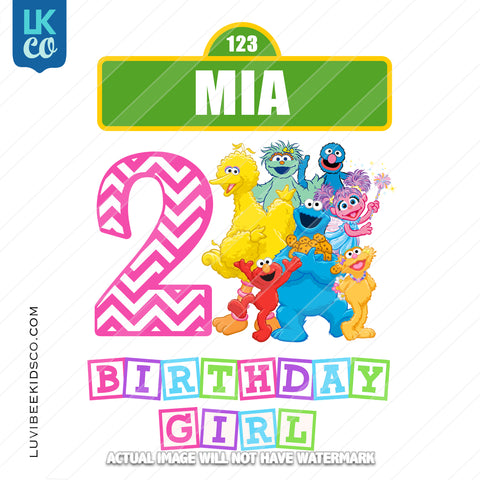 Sesame Street Iron On Birthday Shirt Design | Birthday Girl - Pink
