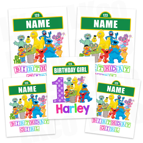 Sesame Street Iron On Transfers Family Pack | Birthday Girl