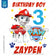 Paw Patrol Iron On Transfer - Marshall Pup | Birthday Boy