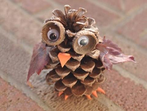 The Many Uses of Pinecones