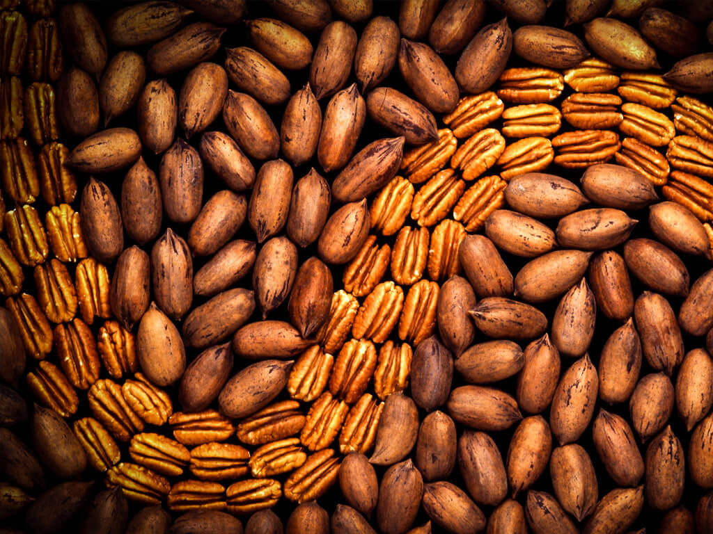 2014 US Pecan Production Estimate