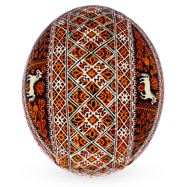 Buy Easter Eggs > Eggshell > Ostrich by BestPysanky
