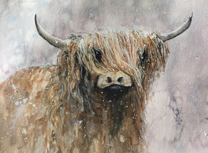 Snowy Day Highland Cow