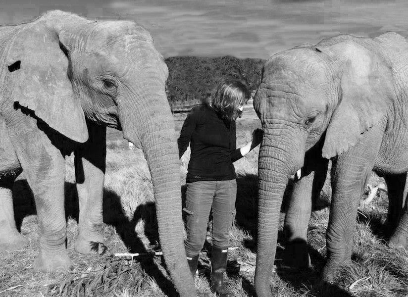 MisHMasH founder Laurie with elephants Keisha and Thato