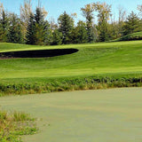 Eagle Rock Golf Club - 18 Hole, Cart, Range & Anytime Use