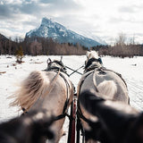 Banff Tours - Sleigh Rides - GoAsAGroup Perks