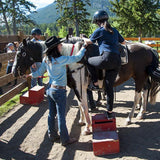Horseback Riding - 1-Hour Bow River Ride
