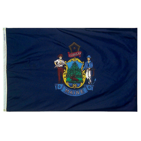 Maine State Flag - Nylon