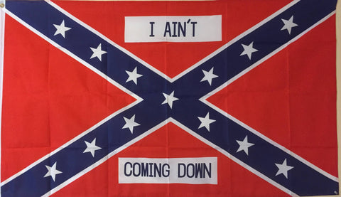 """I Ain't Coming Down"" Confederate Flag."