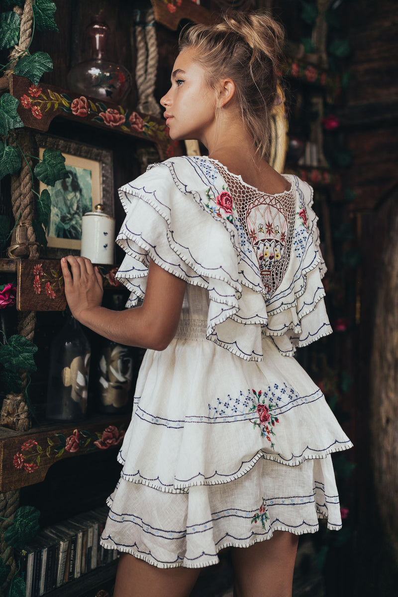 A Little Whimsy - Embroidered Mini Dress