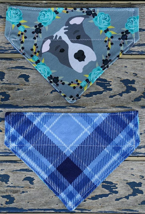 Blue Pitbull Bandana