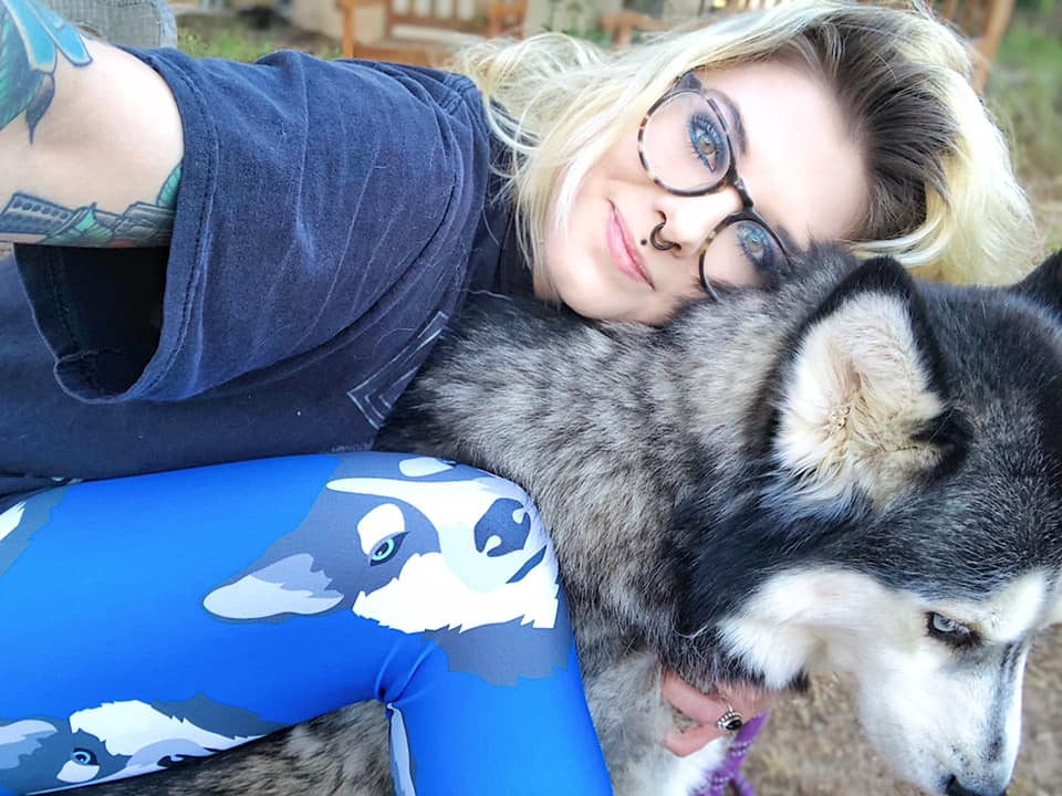Husky On Cobalt Women's Leggings