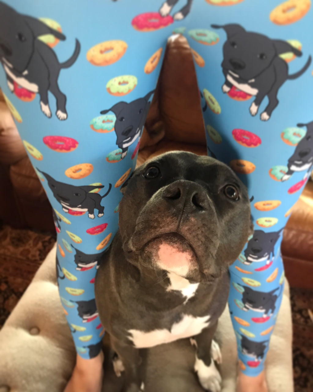 Dori and Donuts Pitbull Women's Leggings