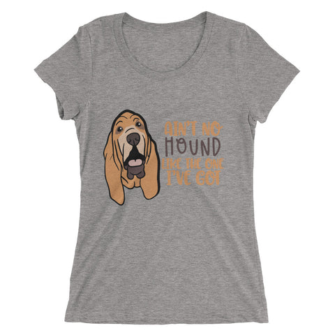 Bloodhound Ladies' short sleeve t-shirt