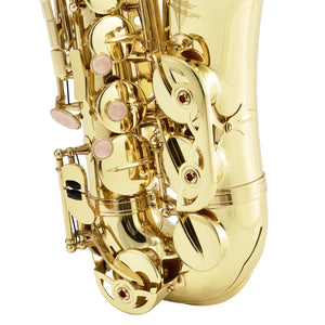 Eastar AS-Ⅱ Student Alto Saxophone Full Kit