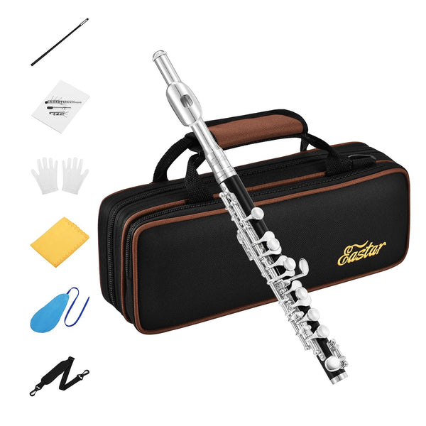 Eastar EPC-3S Black Resin Piccolo Key of C With Silver Plated Keys Hard Case
