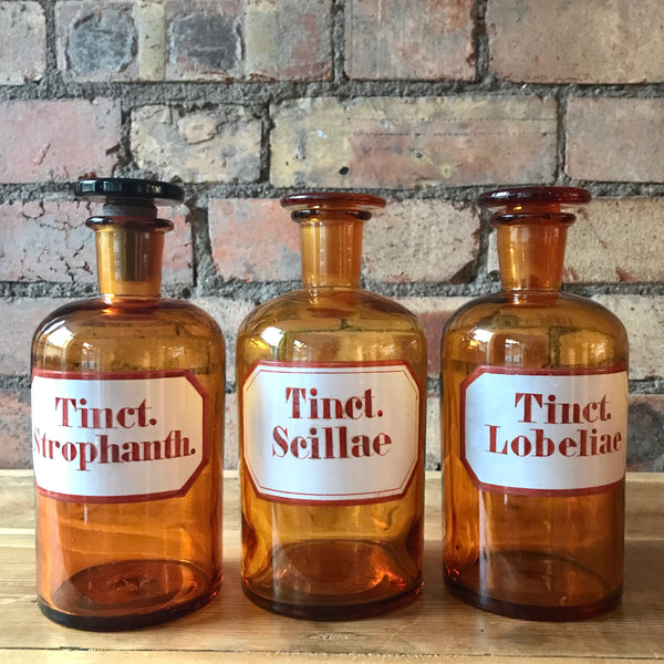 Favorite Trio of Vintage Apothecary Bottles – Reclectic GI42