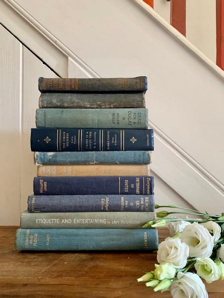 Set of 10 vintage books with blue covers