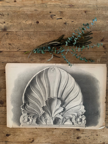 Large 1800s French Lithographic Ornamental Print