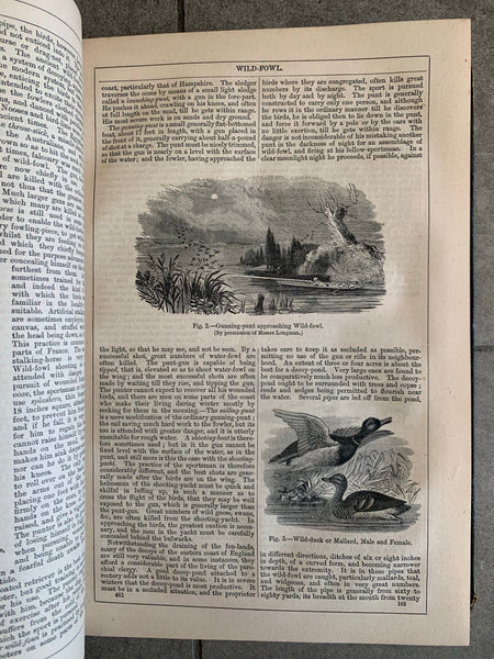 Collection of 1800s Chambers's Encyclopedias