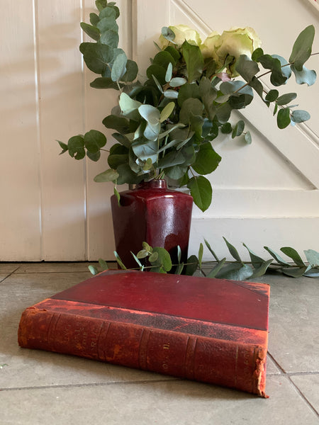"1950s ""Living Animals of the World"" with Leather Spine"