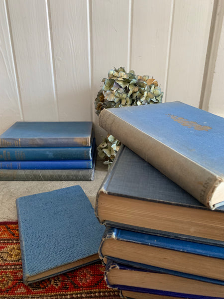 Set of 11 vintage books with blue covers