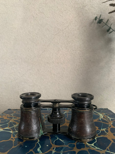 1800s French Opera Glasses and Leather Case