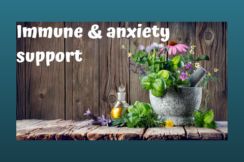 Immune / Anxiety pack - Echinacea Root  & Tea Tree - Harriet Herbery
