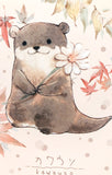 cute animal kawaii postcard otter frog fox bird chick bunny rabbit individual uk postcards