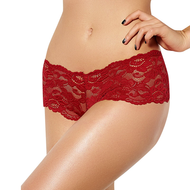 CURVESTYLES Lace Panties CS1091