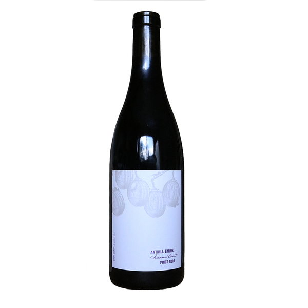 Anthill Farms Pinot Noir Sonoma Coast