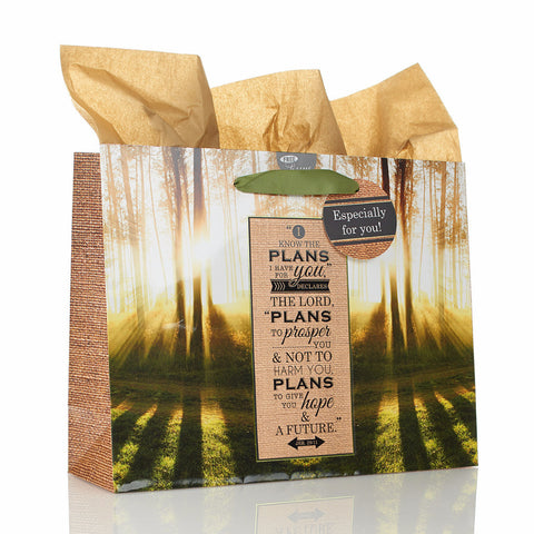 Large Gift Bag - Trees the Plans - Jeramiah 29:11