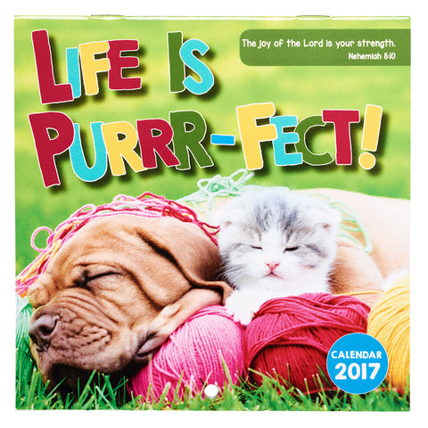 2017 Small Wall Calendar - Life is Purrr-Fect!