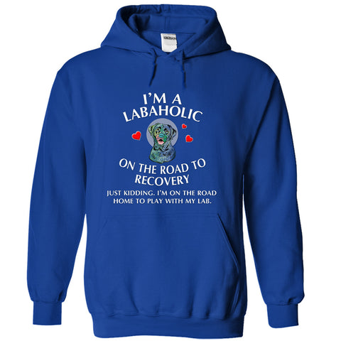 Im a Labaholic On The Road To Recovery - Hoodie