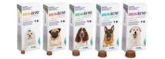 BRAVECTO FOR DOGS - Protection up to 12 weeks with one chew!!