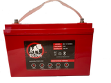 Big Dog Battery 12V 120AH DC  (I)