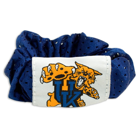 Kentucky Wildcats Hair Twist