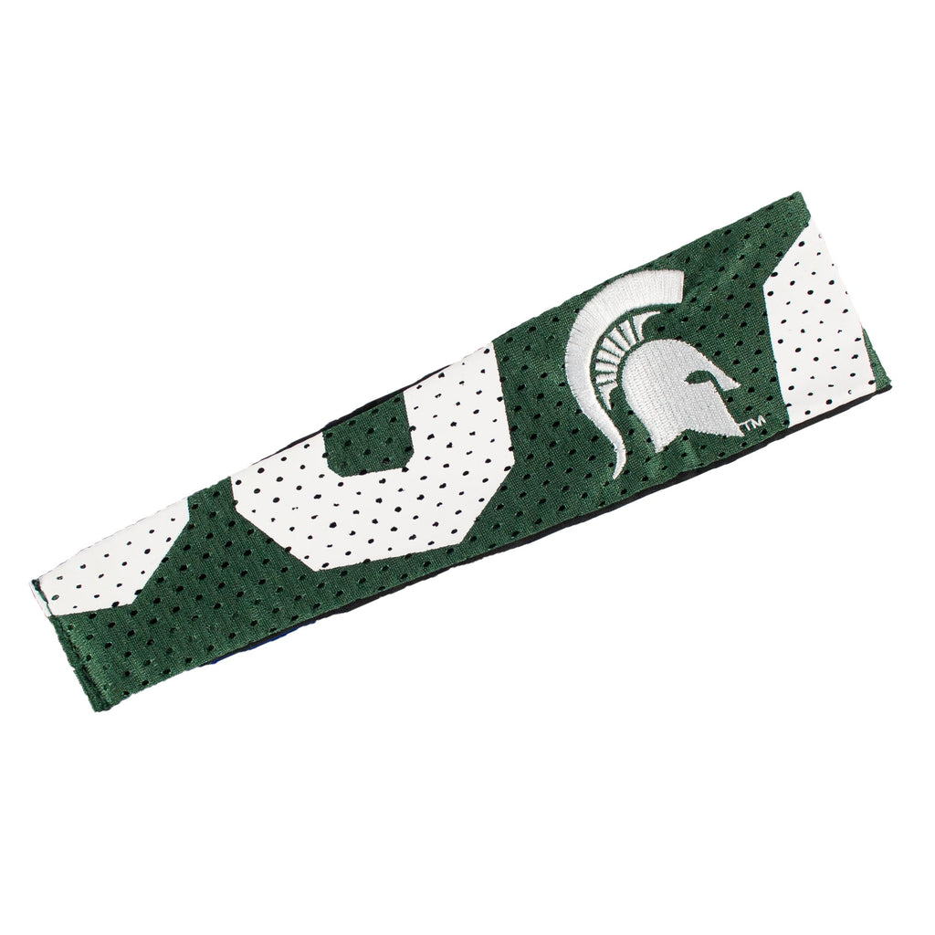 Michigan State Spartans FanBand