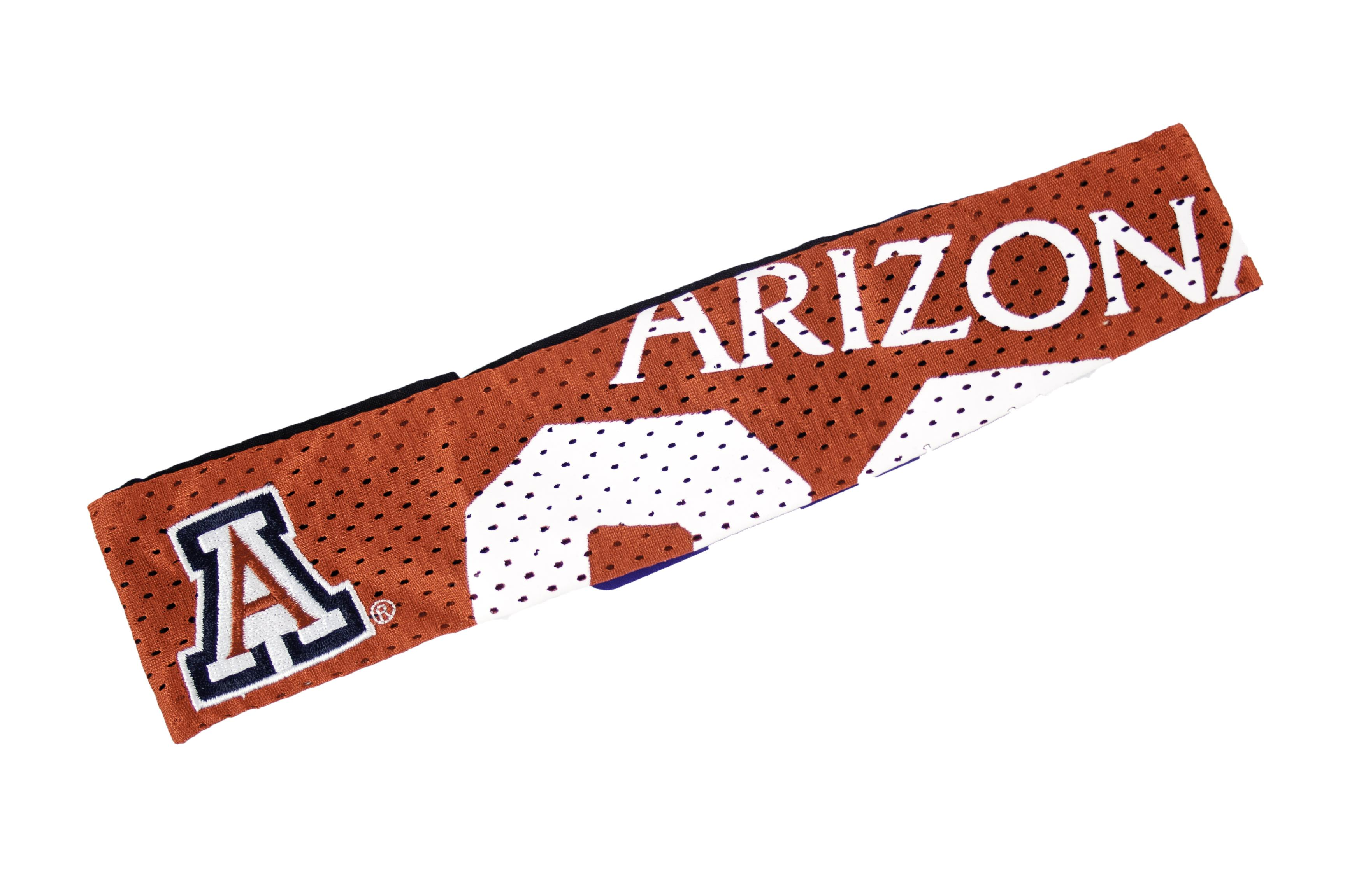Arizona Wildcats FanBand
