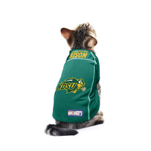 Load image into Gallery viewer, North Dakota State University Pet Jersey