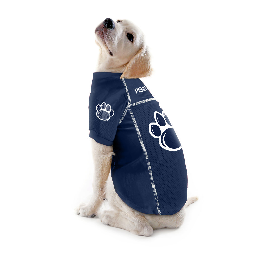 Pennsylvania State University Pet Jersey