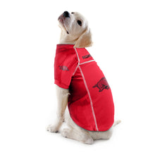 Load image into Gallery viewer, University of Arkansas Pet Jersey